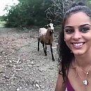 Garota leva coice de um bode ao tentar fazer selfie