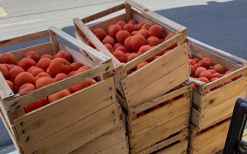 Obras SociaisIrmã Dulce e Martagão Gesteira recebem doações de caixas de tomate
