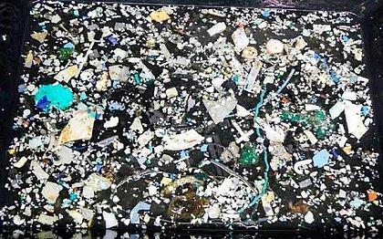 Plásticos recolhidos durante a expedição de pesquisa no Pacífico
