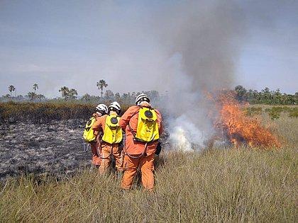Mais duas aeronaves são enviadas para combate a incêndios na Bahia