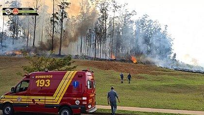 Avião cai e sete pessoas morrem no interior de São Paulo