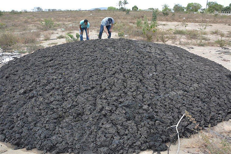 Feira de Santana: 5 toneladas de resíduo não identificado são despejadas em estrada
