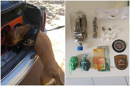 Cadela da Rondesp ajuda a encontrar droga dentro de carro na Bahia