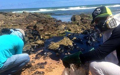 Grande quantidade de óleo líquido invade Pedra do Sal e atinge corais e animais