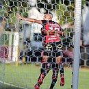 Jogadores do Vitória celebram primeiro gol rubro-negro na partida