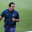 Atual técnico do Bahia, Dado foi o terceiro treinador a comandar o Esquadrão no Brasileirão do ano passado