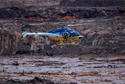 Animais presos na lama de Brumadinho são sacrificados a tiros