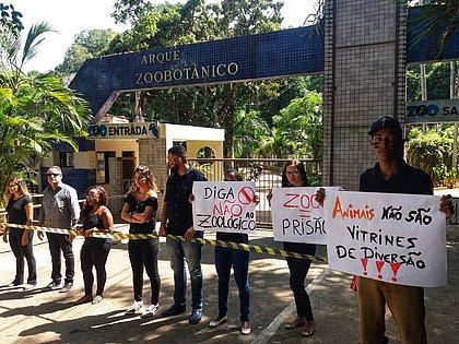 Ativistas fazem protesto após morte de hipopótamo no zoológico de Salvador