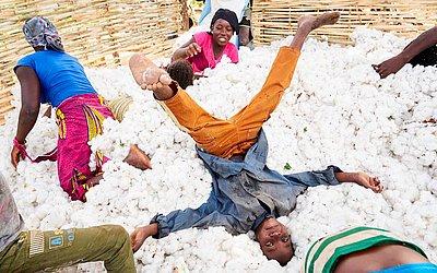 Crianças de Mali se divertem em uma pilha de algodão durante a colheita.