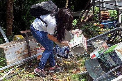 Casos de dengue, zika e chikungunya reduzem em mais de 90% em Salvador