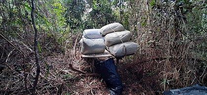 Meia tonelada de maconha é encontrada na Bahia; donos da droga conseguiram fugir