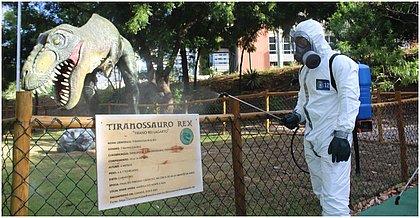 Dinossauros de lagoa de Salvador são 'desinfectados' da covid-19