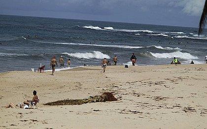 Praia de Stella Maris estava com bastante movimento para quem imagina que as pessoas estão em isolamento