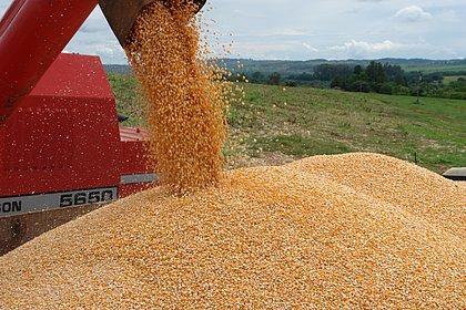 Bahia deve bater novo recorde na produção de grãos