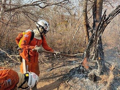 Bombeiros continuam a combater incêndios em várias áreas da Bahia