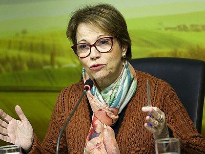 Ministra da Agricultura diz que meio ambiente não deve ser barreira ao comércio