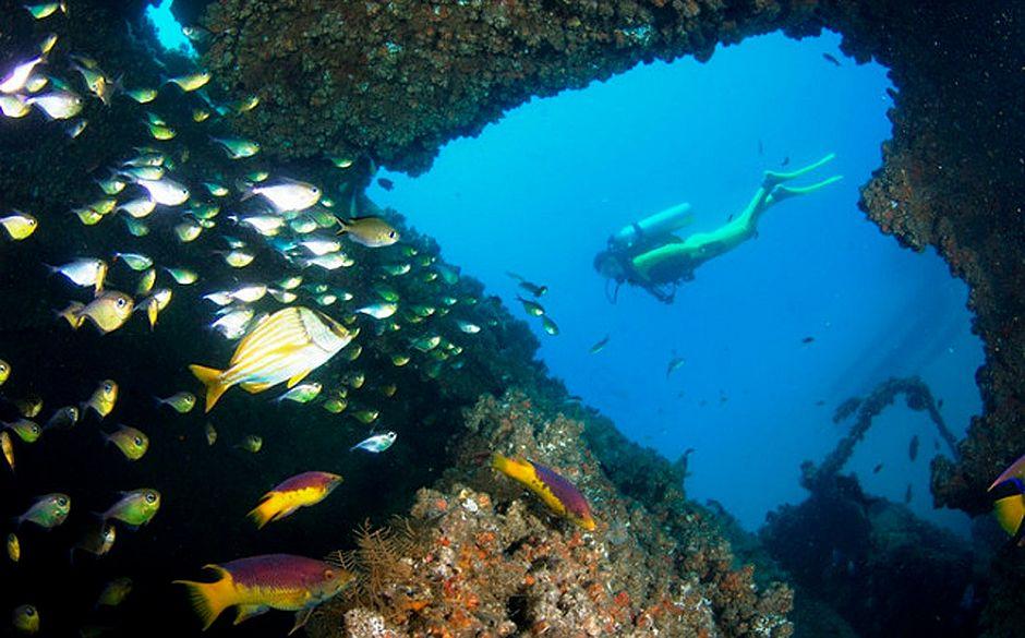 Turismo de Mergulho é aposta na Baía de Todos-os-Santos
