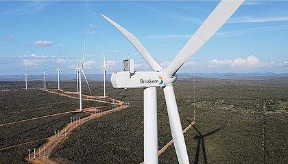 Rota Sustentável: Braskem investe em parcerias para geração de energias renováveis