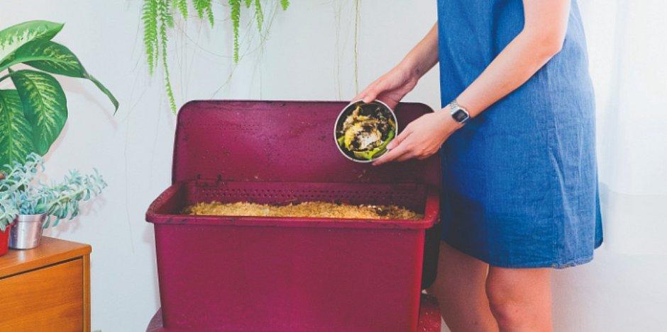 Confira dicas para evitar o desperdício e ser sustentável o ano inteiro