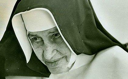 Somos todos Dulce: conheça os 7 baianos guardiões do legado da freira
