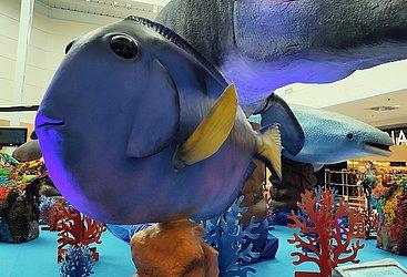 Dory gigante é um dos peixes queridinhos da exposição