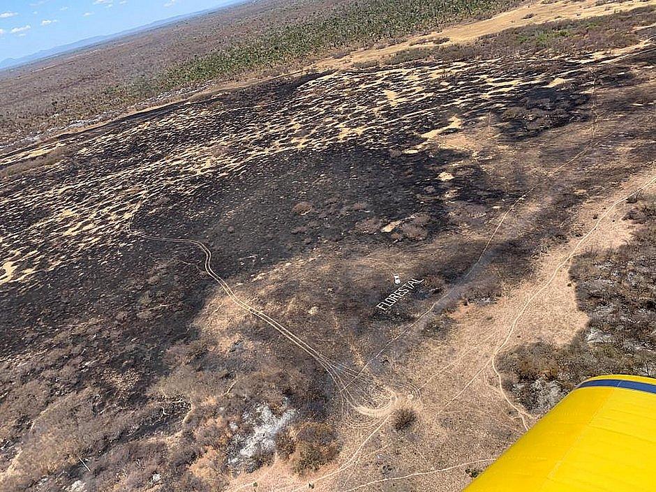 Incêndio em Barra: Corpo de Bombeiros encontra 'vários focos em locais diversos'