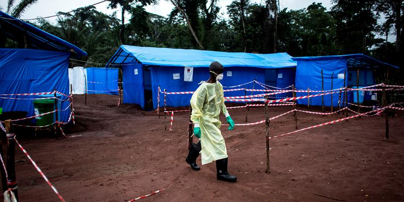 OMS pode declarar emergência internacional surto de ebola no Congo