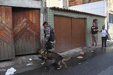 Cão farejador também foi usado durante operação policial pela manhã