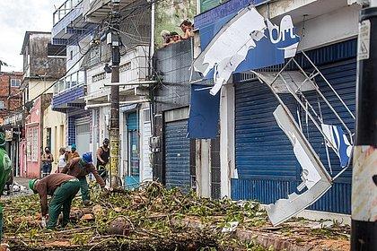 Depois de fortes chuvas, árvore desaba e atinge prédio em Periperi