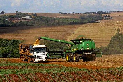 Com um crescimento de 5,7%, o setor agropecuário foi o principal responsável pela expansão da economia no primeiro trimestre