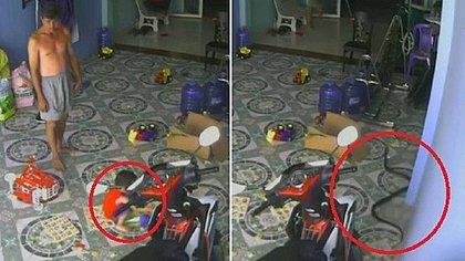 Cobra venenosa persegue e tenta atacar bebê no Vietnã; veja vídeo