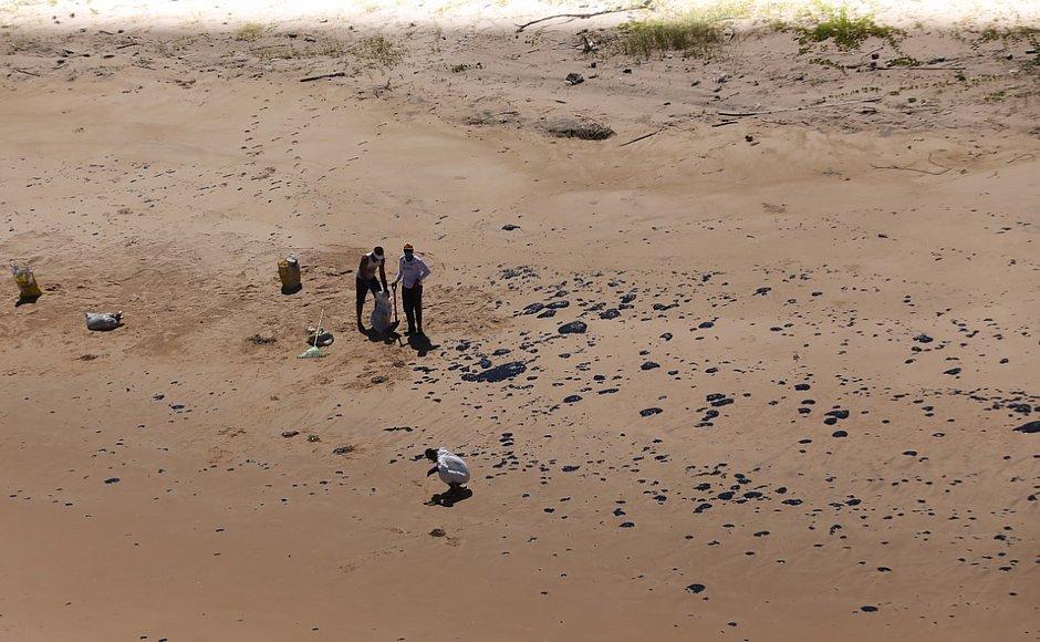CORREIO sobrevoa litoral com Ibama e mostra áreas atingidas por óleo