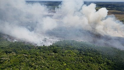 Incêndio consumiu quase 10% de área de Mata Atlânticca em Arraial D'Ajuda