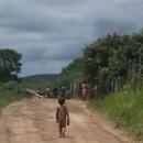 Grupo, que se identifica como indígena, usou paus e pedras para bloquear acesso à Fazenda Esmeralda
