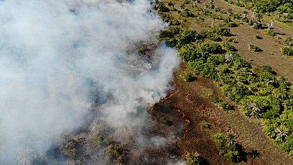Incêndios atingem regiões da Chapada e do Sul da Bahia; Bombeiros combatem chamas