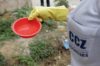 Dez bairros de Salvador são alvos de ações de combate à dengue