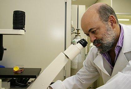O pesquisador virologista Gúbio Soares, da Ufba, diz que na Bahia o acompanhamento da disseminação dos vírus é mais rápido