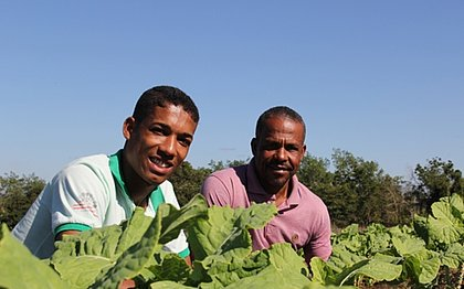 Fundação Odebrecht lança sistematização de tecnologia social ligada à agricultura