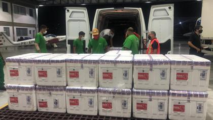 Lote com 227 mil doses da vacina de Oxford desembarca em Salvador