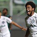 Luiz Adriano abriu o placar para o Palmeiras contra o América-MG