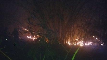 Incêndio no ano passado em bambuzal próximo ao terreiro