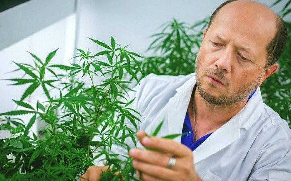 Professor Igor Kovalchuk é um dos responsáveis pelo estudo