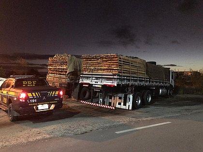 Cargas de madeira transportadas ilegalmente são apreendidas na Bahia