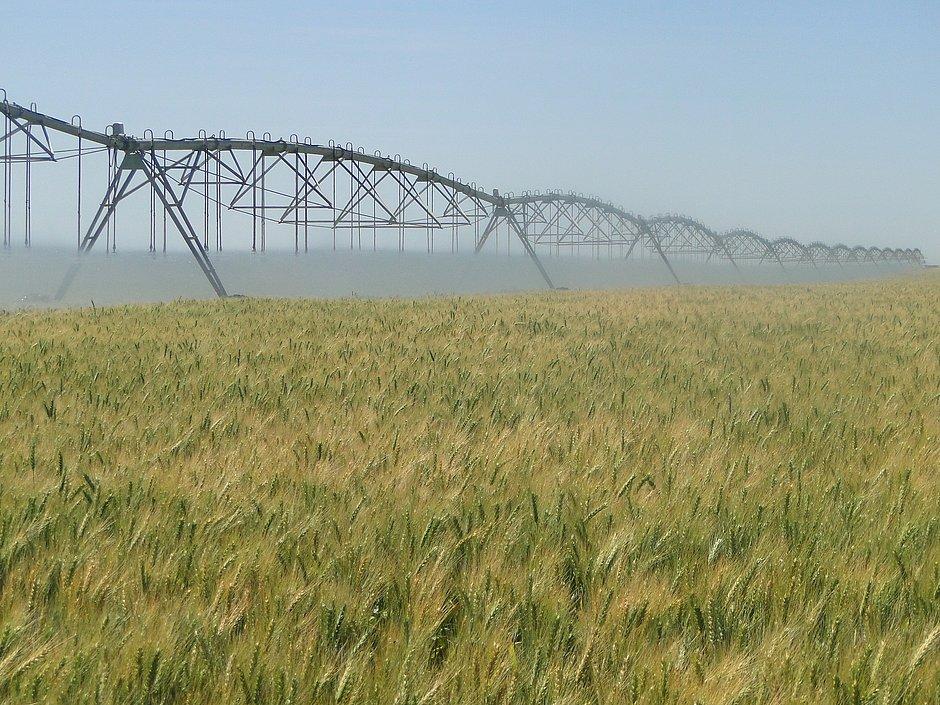 Governo federal cria polo de irrigação do oeste da Bahia