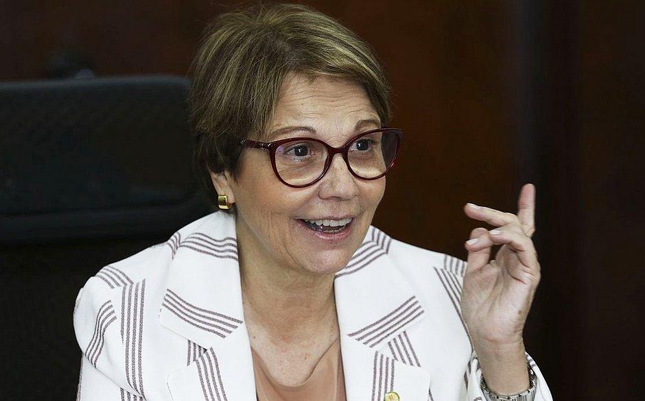 Pantanal: ministra da Agricultura diz que 'mais gado' poderia minimizar queimadas