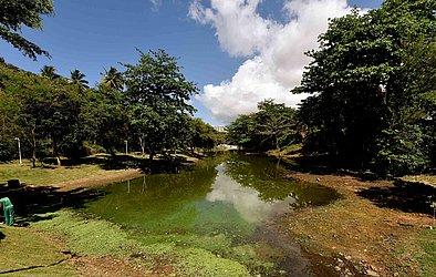 Parque Lagoa dos Pássaros, no Stiep