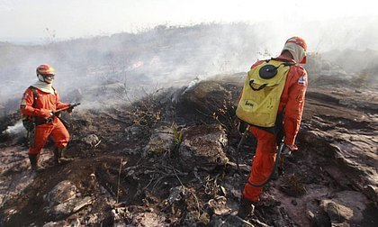 Ibama vai abrir 1.659 vagas temporárias para atendimento de emergências ambientais