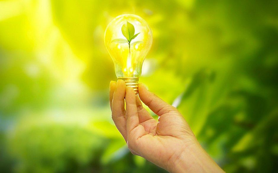 Ideias simples, quando multiplicadas, auxiliam a conter o aumento da temperatura global e suas consequências