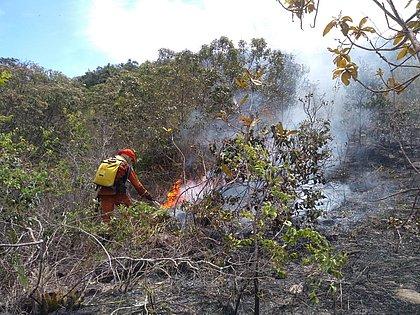 Incêndio avança sem controle na Chapada Diamantina e consome 500 hectares