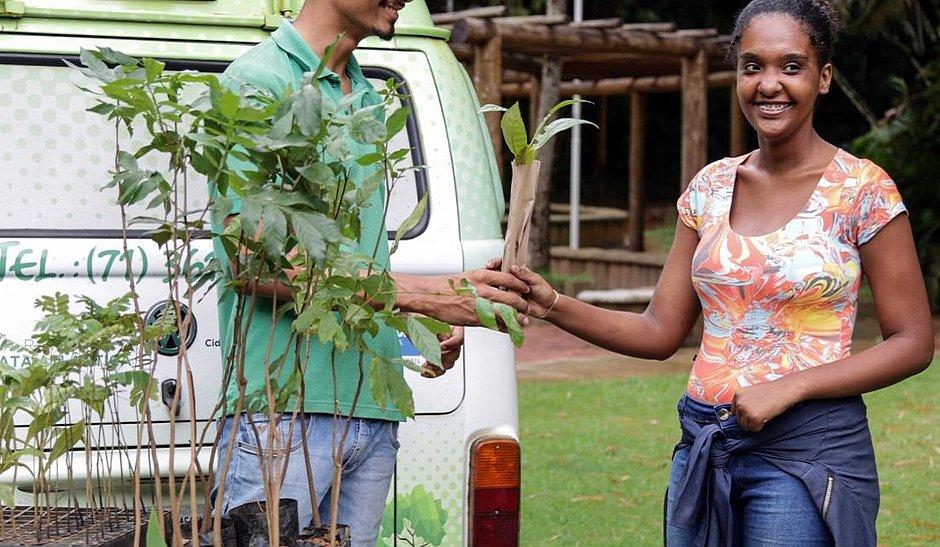 Já foram distribuídas 4,5 mil mudas de árvores nativas da Mata Atlântica para a população soteropolitana